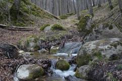 a legit babbling brook
