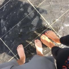 puddle plaza